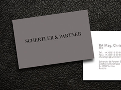 SCHERTLER & PARTNER